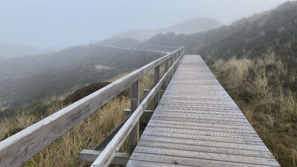 Bohlenwege im Nebel